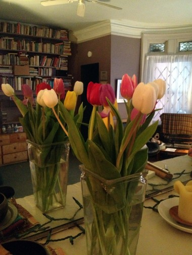 the tulips are filling in with colorful blossoms