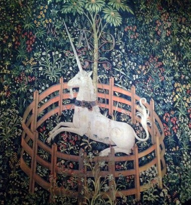 11-17 unicorn in captivity