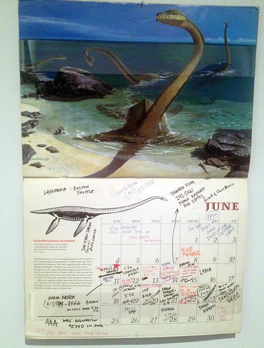 3-8 wojnarowicz calendar