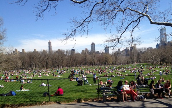 springs comes, at last, to the Sheep Meadow