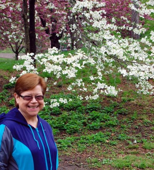 5-9 jo and cherry trees