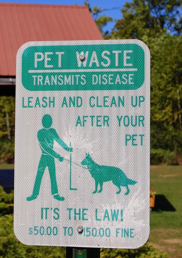 9-19 pet waste