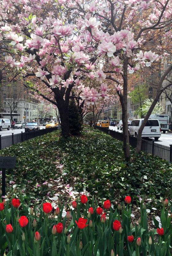 4-22 park avenue