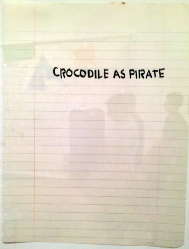 8-16 crocodile as pirate