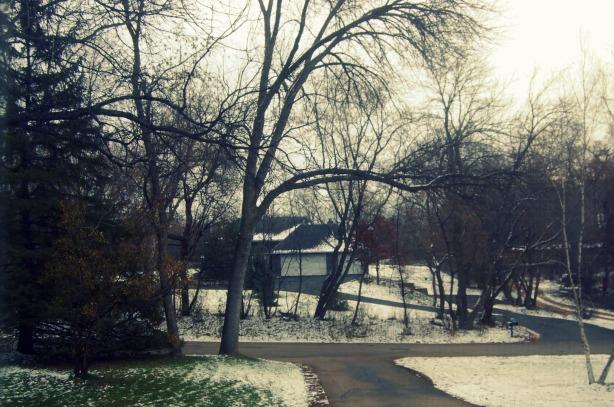 11-29 snowy suburb