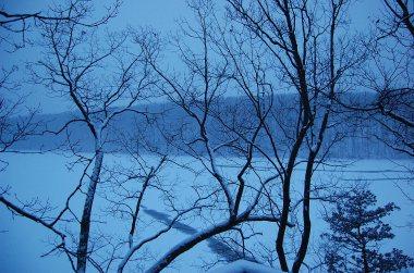 2-15 snow blue night