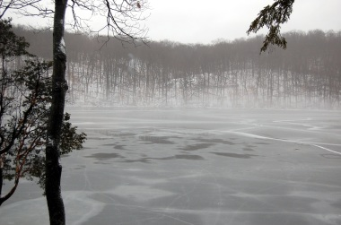 2-16 foggy morning