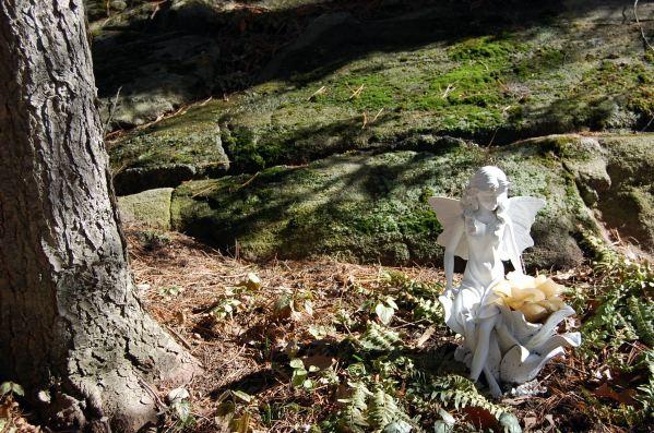 2-22 tree fairy