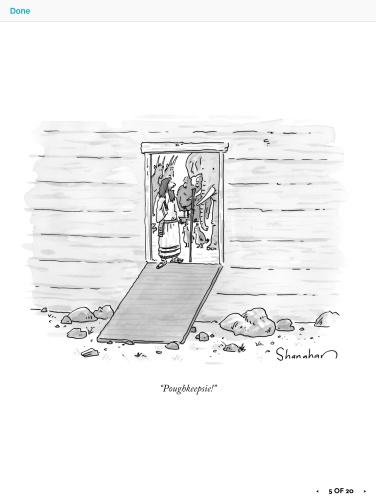 poughkeepsie cartoon