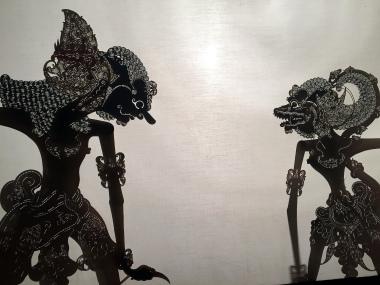 5-14 puppet shadows