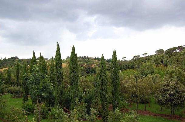 6-12 il tribbio viewed from il bosco