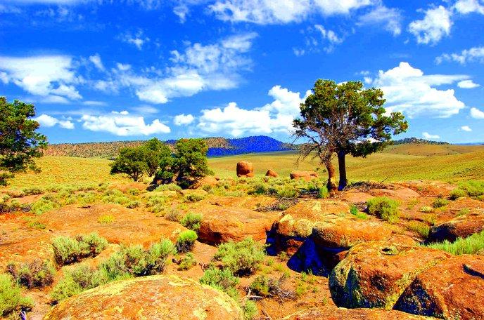 8-2 high desert 2