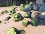 2-8 green stonesmore