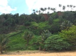 2-8 lush hillside secretbeach